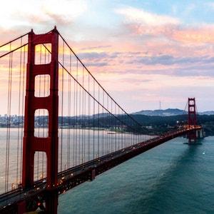 Plant care guide for Golden Pothos in San Francisco, California