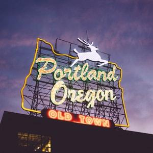 Plant care guide for Tradescantia 'White Zebra' in Portland, Oregon