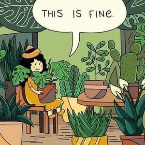 Mattoni avatar on Greg, the plant care app