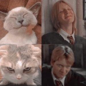 Harrypotterlover avatar