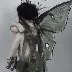 Dark_fairy13 avatar