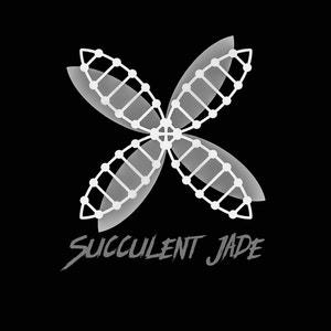 Succulentjade avatar